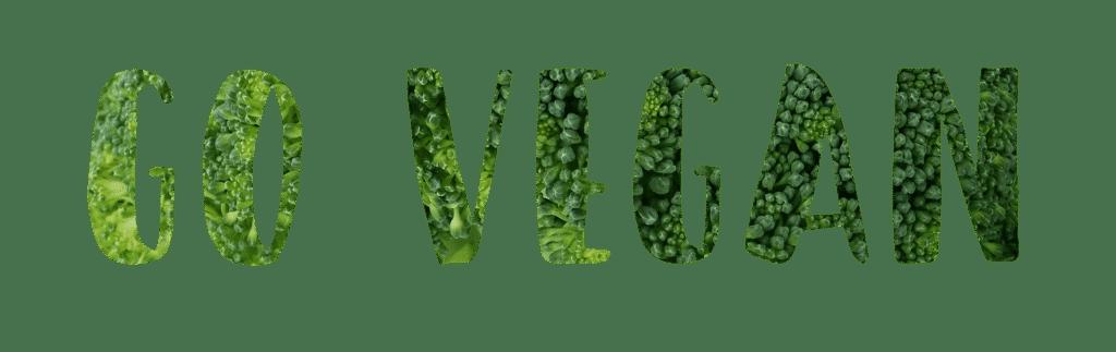 probiotische Lebensmittel vegan