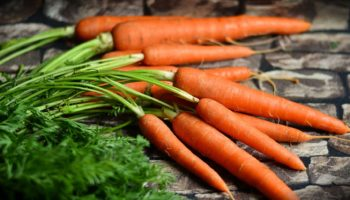 Retinol vegan – Vitamin A – ein kritischer Nährstoff?